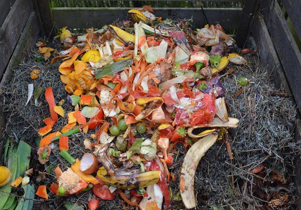 Green Waste, Compost Bin